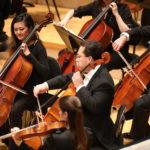 chello symphony musicians