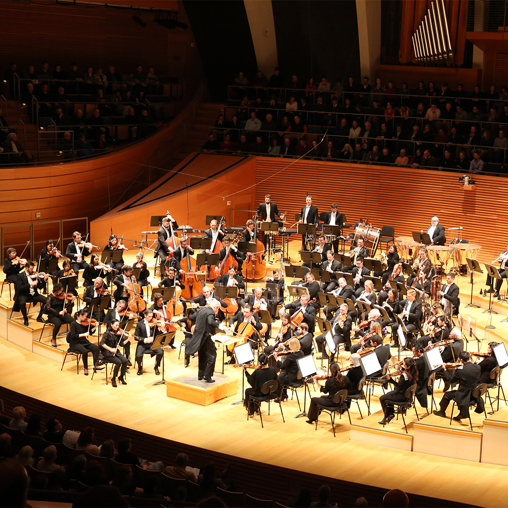 overlook of symphony performance