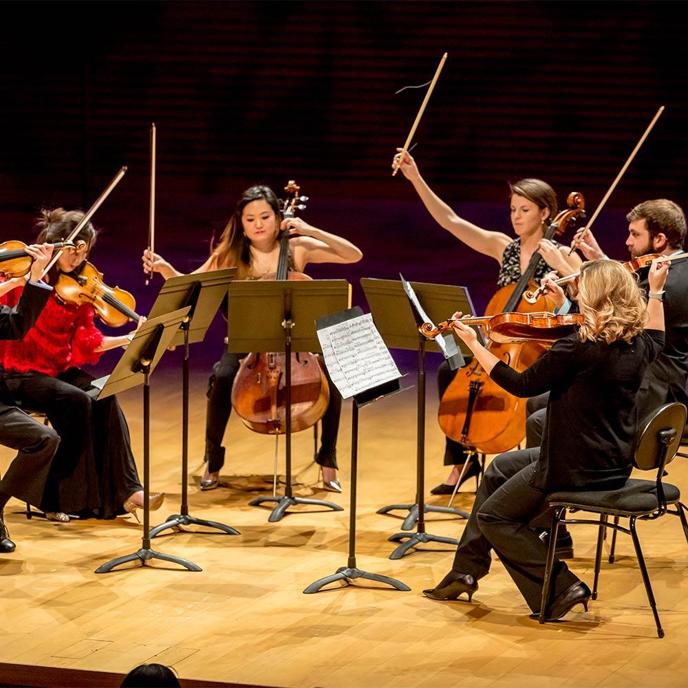 string musician performance
